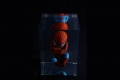 alexandre_nicolas_inclusion_bb_superhero_3