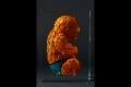 alexandre_nicolas_inclusion_bb_superhero_2
